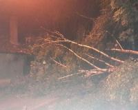 Olujno nevrijeme intervencije 25.06 (8)