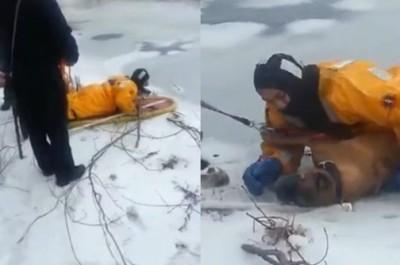 Spašavanje psa iz jezera