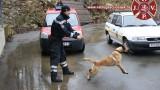 tecaj-za-vodica-potraznog-psa-2014-8