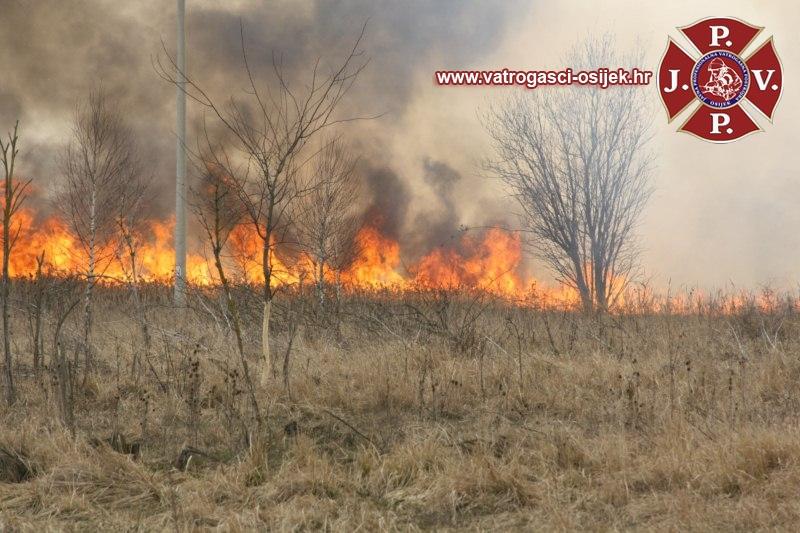 pozar-trave-tufek-15-03-2011-3